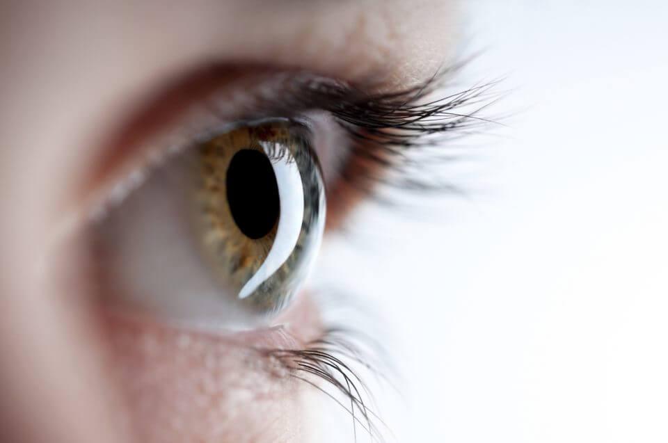 Ceguera prematura a causa de la retinosis pigmentaria